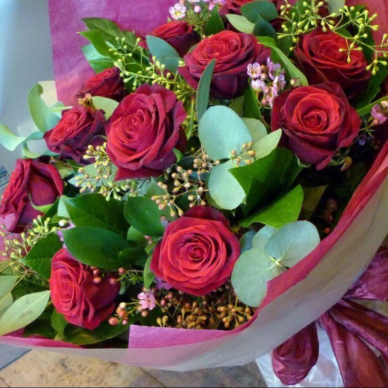 florette flowers  paisley florist  renfrewshire scotland, Beautiful flower